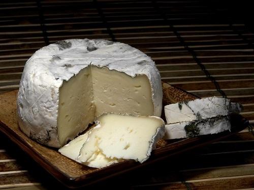 cheese-3540_500