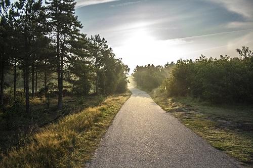 bike-path-189174_500