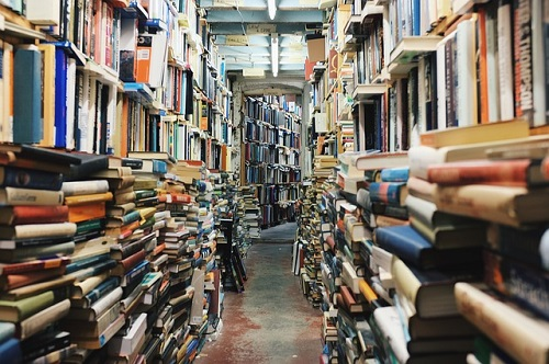 books-768426_500